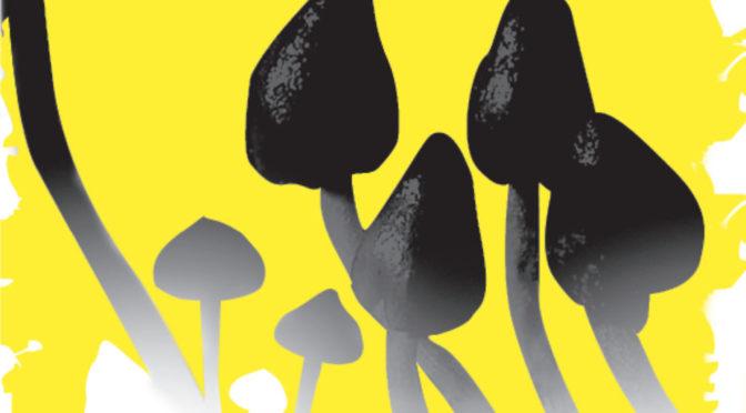 Como tomar cogumelos Alucinógenos